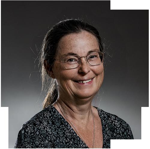 Catrina Ingelstam profilbild